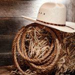 thema western